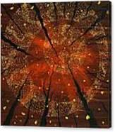 Shaman's Dream Canvas Print