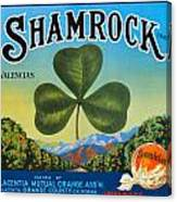 Shamrock Crate Label Canvas Print