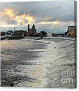 Shannon River 3 Canvas Print