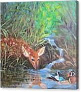 Sharing The Pond Canvas Print