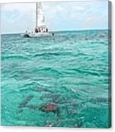 Shark N Sail I Canvas Print