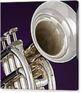 Sharp Silver Trumpet Canvas Print