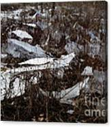 Shattered Field Canvas Print