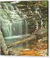 Shawnee Falls At Ricketts Glen Canvas Print