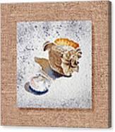 She Sells Sea Shells Decorative Collage Canvas Print