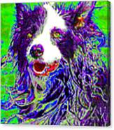 Sheep Dog 20130125v4 Canvas Print