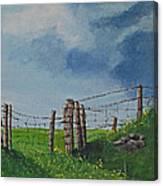 Sheep Field Canvas Print