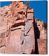 Sheer Canyon Walls Canvas Print