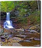 Sheldon Reynolds Falls Autumn Canvas Print