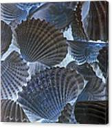 Shell Ballet Canvas Print