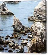 Shell Beach Rocky Coastline Canvas Print