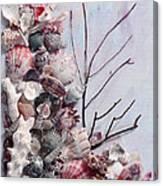 Shell Bouquet  No 6 Canvas Print