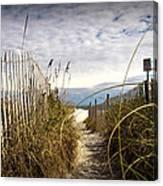 Shell Island Beach Access Canvas Print