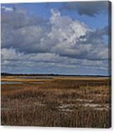 Shell Island To Figure Eight Panorama Canvas Print