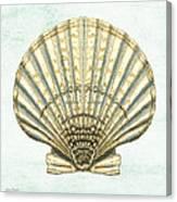 Shell Treasure-a Canvas Print
