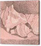 Shellball Huddle Canvas Print