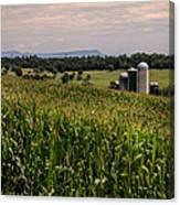 Shenandoah Corn Canvas Print