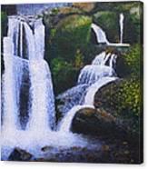 Shenandoah Valley Falls Canvas Print