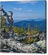 Shenandoah Vista Canvas Print