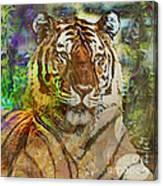 Shere Khan - Square Version Canvas Print