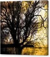 Shine In Twine  Canvas Print