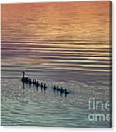 Shipshewana Lake Evening Canvas Print