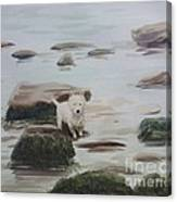 Shirley's Dog Canvas Print
