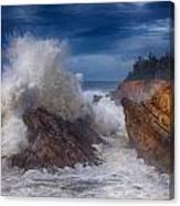 Shore Acre Storm Canvas Print