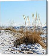 Shore And Ice Canvas Print