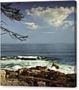 Shoreline View In Acadia National Park Canvas Print