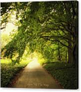 Show Me The Way Canvas Print