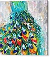 Showy Peacock Canvas Print