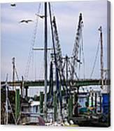 Shrimp Boats At Lazaretto Creek Canvas Print