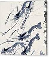 Shrimp Intriguing Canvas Print
