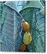 Shrimp Net Close Up Canvas Print
