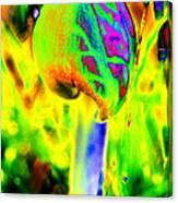 Shroooms Canvas Print