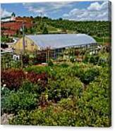 Shrubbery At A Greenhouse Canvas Print