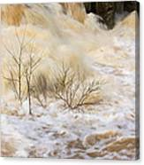 Shrubs In The Rapids #2 Canvas Print