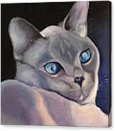 Siamese In Blue Canvas Print