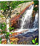 Side View Of Southeast Brook Falls In Gros Morne Np-nl Canvas Print