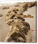 Side Winding Canvas Print