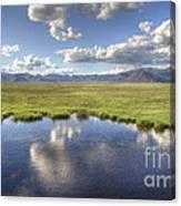 Sierra Valley Wetlands II Canvas Print