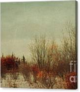 Signs Of Winter Canvas Print