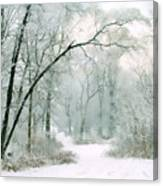 Silence Of Winter Canvas Print