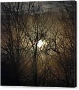 Silent Foggy Sunrise Canvas Print