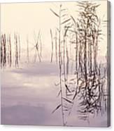 Silent Rhapsody. Sacred Music Canvas Print