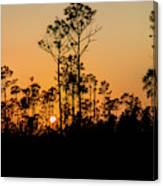 Silhouette Of Trees At Sunset Canvas Print