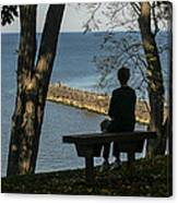 Silhouette On The Hill Canvas Print