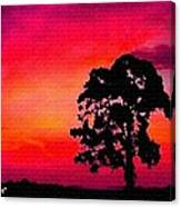 Silhouette Sunset H A Canvas Print