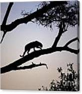 Silhouetted Leopard Canvas Print